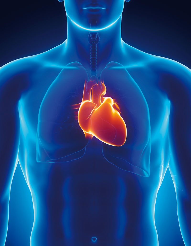 how to get healthy heart naturally