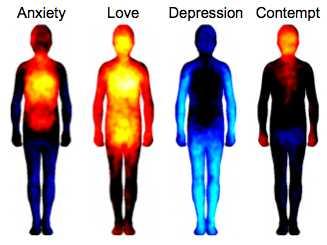 bodyemotion